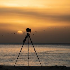 6 reasons to use a tripod for photography and videography equipment content creation